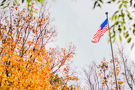 The American flag flies in the wind above trees of various colors.
