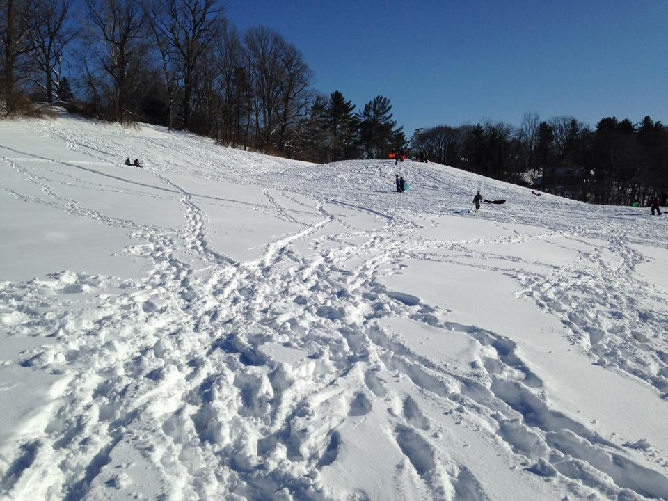 McDaniel's golf course is a popular place for students and Westminster residents to  go sledding. Photo by Evan King.