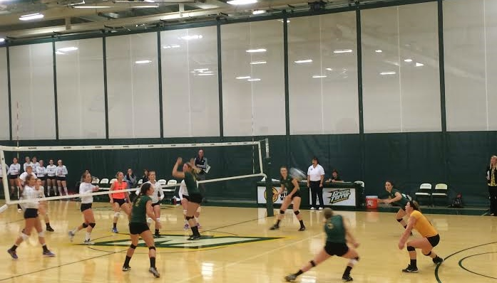 Taylor Bauman (libero) and Gena Weger (#5) look to receive the ball from Lebanon Valley in their sweep on Saturday.
