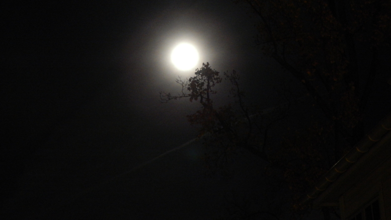 A full moon illuminates the sky while the Ghost Tours are conducted. Photo by Hannah Krauss