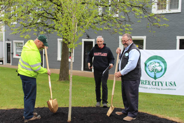Steve Allgeier, chairman of the Westminster Tree Commission, looks on as Bernie and Eric admire their work.