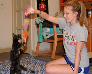 Therapy animals offer companionship, entertainment and fun for their owners.