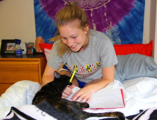 Sarah Kvech not only shared what she found with out about having a therapy animal, but also her personal experience and what she has learned with us.