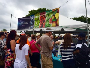 The crowd at the Annual Maryland Wine Festival of Carroll County. Photo by Lauren Trainor.