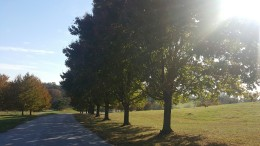 The nature trail at Wakefield Valley Golf Course. Photo by Alvontae Drummond.