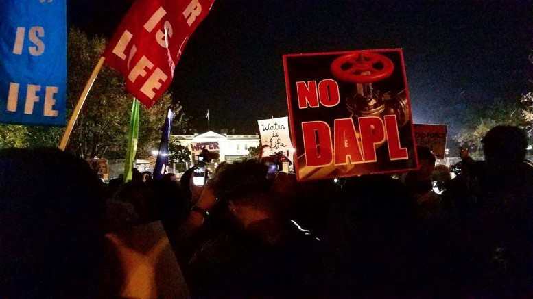 Protesters demonstrate in front of the White House in DC. Image courtesy of Simi Adeoye.