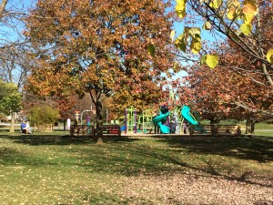 The park's new play structure as seen through the fall foliage.