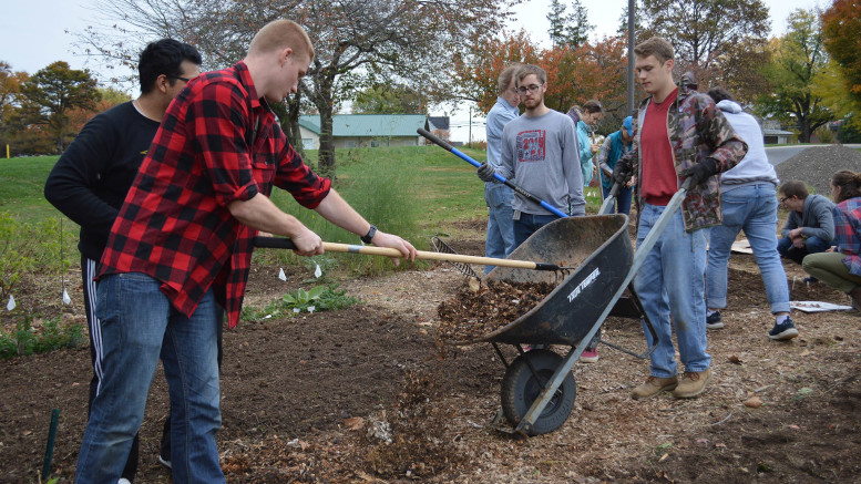 Students, faculty, and community members helped prepare the campus garden for the winter. (Shaquille Tairellil / McDaniel Free Press).